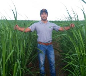 Amazon AgroSciences Fertilizantes Resultados Cana-de-açúcar Foto Produtor Flavio Sanchez Padrão Amazon Otimizada