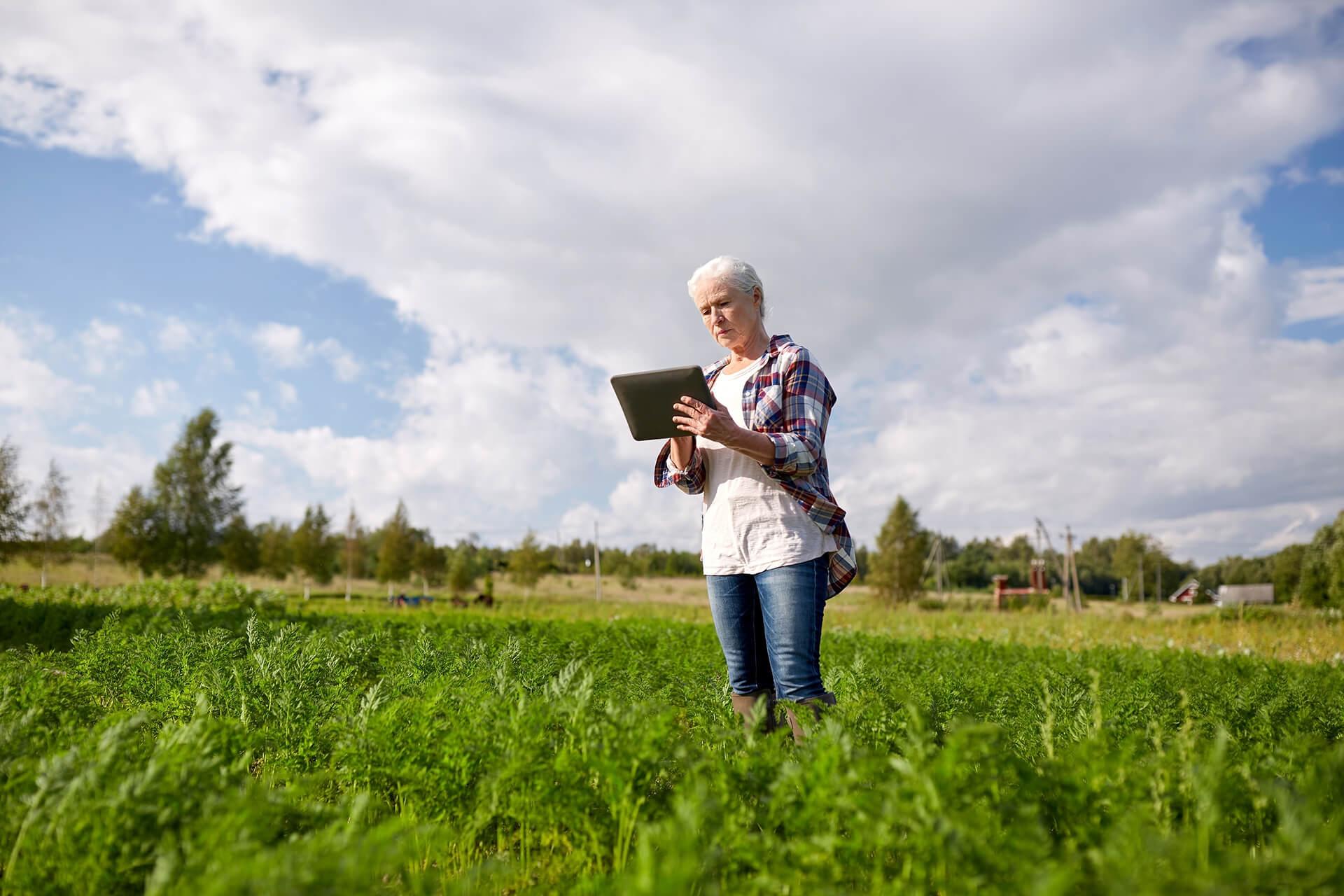 Amazon AgroSciences Fertilizantes Líquidos de Alto Desempenho Imagem de Fundo Blog