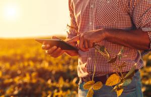 Agricultura digital e agricultura de precisão