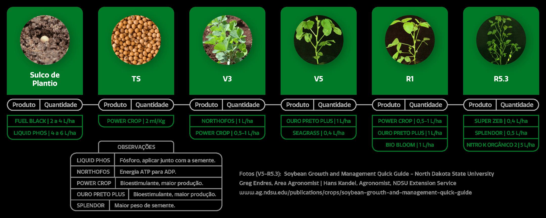 Amazon AgroSciences Páginas de Cultura Estágios da Soja Imagem Desktop