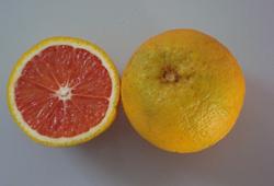 laranja mombuca