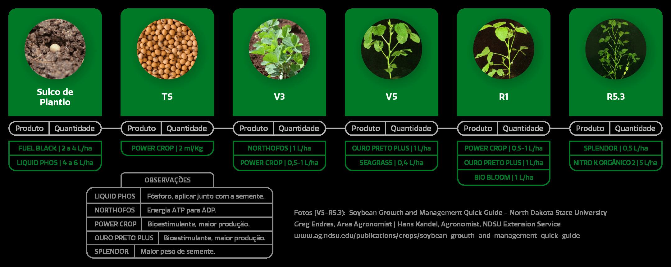 Amazon AgroSciences Páginas de Cultura Estágios da Soja Imagem Desktop Atualizada